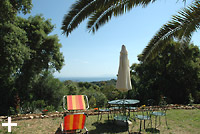 Dog friendly apartments on the island of Elba ? Apartments Le Querce in Capoliveri